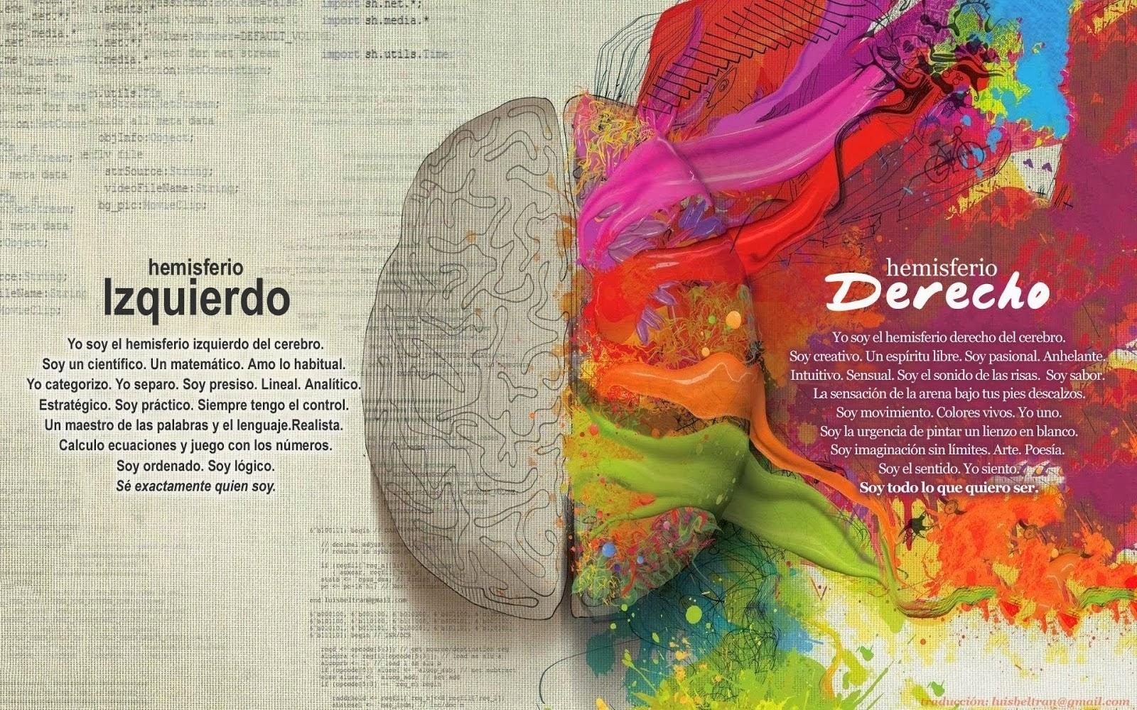 hemisferios izquierdo y derecho