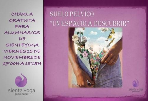 "Charla teórico-práctica Suelo Pélvico, ""Un espacio a descubrir"""